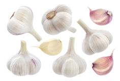 Garlic isolated on white background. Collection Stock Photo