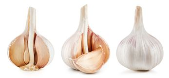 Garlic Isolated on white royalty free stock image
