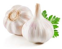 Garlic Isolated on white royalty free stock photos