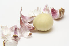Garlic and its peelings Stock Photography