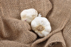 Garlic on jute Stock Image
