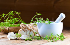 Garlic and  kitchen herbs Royalty Free Stock Images