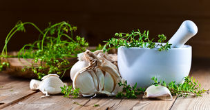 Garlic and kitchen herbs Royalty Free Stock Photos