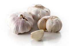 Garlic. Knob and clove of garlic on white background royalty free stock photography