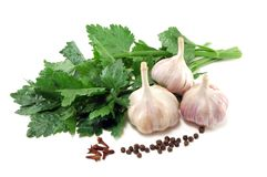 Garlic with leaves of a celery and spices Royalty Free Stock Photography