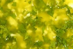 Garlic lemon and parsley sauce Royalty Free Stock Photography