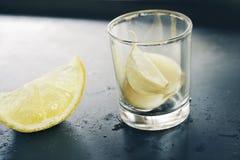 Garlic and lemon royalty free stock photo