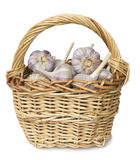 Garlic lie in a wicker basket Stock Photography