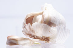 Garlic with light background Stock Image