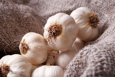 Garlic on linen Royalty Free Stock Photos