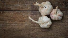 Garlic lobes Stock Image
