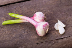 Garlic. Lying on a wooden table Stock Photography