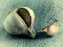 Garlic, macro Royalty Free Stock Photography