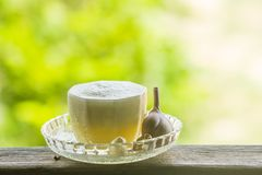 Fresh Garlic Juice stock photo