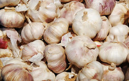 Garlic on the market. Close up of garlic on market stand Stock Photography