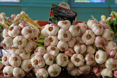 Garlic on the market of Figeac Stock Photography