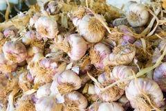 Garlic at the market Royalty Free Stock Photos