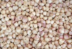 Garlic on market stand. A many garlic on market stand stock photos