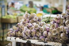 Garlic on Nizwa market Stock Photo