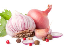 Garlic and onion. On white background with pepper and parsley stock photography