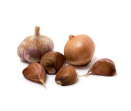 Garlic and onion. On the white background Stock Images