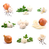 Garlic and onion Stock Photography