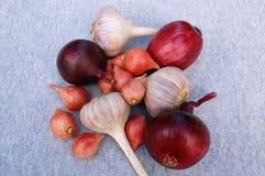 Garlic And Onion Bulbs. On the grey background Stock Photos