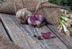 Garlic and onion Royalty Free Stock Photo