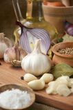 Garlic, onion, coriander, sesame seeds, black pepper, bay leaf, sea salt. Background, wallpaper Food and spices for cooking spicy hot dishes royalty free stock photos