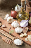 Garlic, onion, coriander, sesame seeds, black pepper, bay leaf, sea salt, olive oil Royalty Free Stock Photo