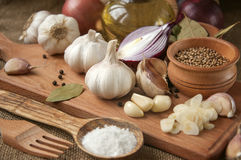 Garlic, onion, coriander, sesame seeds, black pepper, bay leaf, sea salt, olive oil Royalty Free Stock Photos