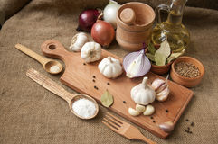 Garlic, onion, coriander, sesame seeds, black pepper, bay leaf, sea salt, olive oil Royalty Free Stock Photography