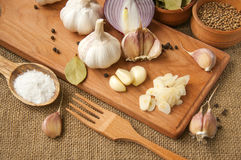 Garlic, onion, coriander, sesame seeds, black pepper, bay leaf, sea salt, olive oil Royalty Free Stock Images
