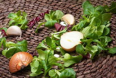 Garlic ,onion and fresh herbs Royalty Free Stock Photography