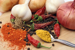 Garlic, onion and spices Stock Images