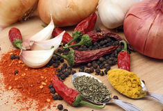 Garlic, onion and spices Stock Photography