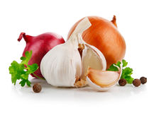 Garlic and onion vegetables Stock Images
