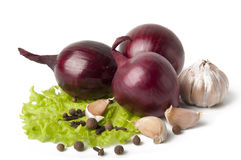 Garlic and onion vegetables with salad spice isola. Ted on white background Stock Images