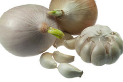 Garlic and Onion. On white background Stock Images