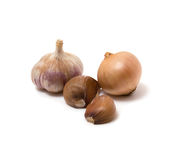 Garlic and onion on the white background. Garlic and onion isoladed on the white background Royalty Free Stock Photos