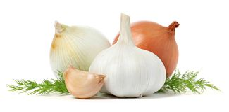 Garlic, onions and dill. On white background royalty free stock photography