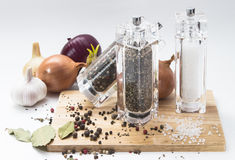 Garlic, onions, glass mill with pepper and salt on Royalty Free Stock Photo