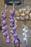 Garlic and onions hanging in the kitchen stock images