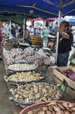 Garlic and Onions Stall. The Garlic and Onions Stall at the twice weekly market at Collioure France Stock Photos