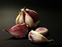 Garlic original - no edit only a little sharpness Stock Photography