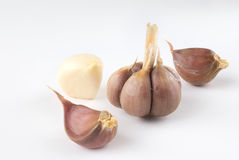 Garlic over white background Royalty Free Stock Photos