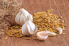 Garlic and paddy rice on wooden Royalty Free Stock Photo