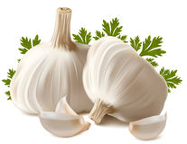 Garlic with parsley. Stock Photos
