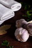 Garlic with Parsley and Bay Leaf Stock Images