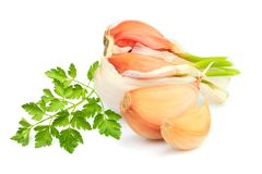 Garlic with parsley closeup. Isolated on white background stock photos